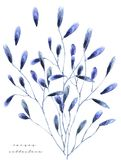 Watercolor illustration with floral. Painting freash flowers on white background Gift card Flowers shop