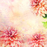 Watercolor illustration of floral theme Stock Photo