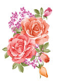 Watercolor illustration flower Stock Photo