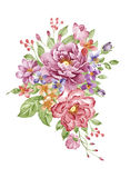 Watercolor illustration Stock Images