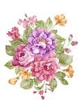 Watercolor illustration Stock Photos