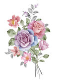 Watercolor illustration Royalty Free Stock Images