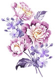 Watercolor illustration flower in simple background Stock Images