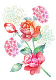 Watercolor illustration flower in simple background Stock Photo