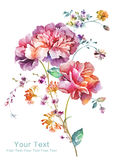 Watercolor illustration flower in simple background Royalty Free Stock Photo