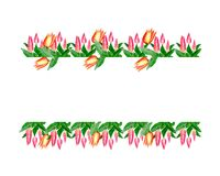 Watercolor illustration flowers from pink tulips stock illustration