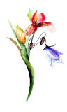Watercolor illustration with flowers Stock Photo
