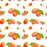 Watercolor illustration of fresh peaches isolated on a white background. Seamless pattern royalty free illustration