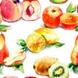 Watercolor illustration of fruit Stock Photo