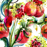 Watercolor Illustration of fruits Royalty Free Stock Photos