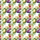 Watercolor Illustration of fruits Royalty Free Stock Photo