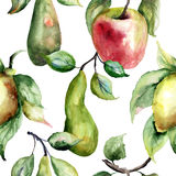Watercolor Illustration of fruits Royalty Free Stock Photography