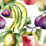 Watercolor Illustration of fruits Stock Photo