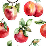 Watercolor Illustration of fruits Stock Photos