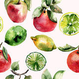 Watercolor Illustration of fruits Stock Photography