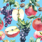 Watercolor Illustration with fruits Stock Image