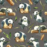 Watercolor seamless pattern of different panda and leaves Stock Photography