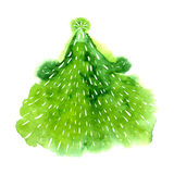 Watercolor illustration of green christmas tree. Vector design element. Royalty Free Stock Photos