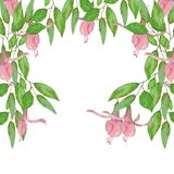Watercolor illustration of green leaves and pink flowers stock illustration
