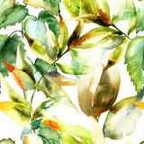 Watercolor illustration of green leaves Stock Images