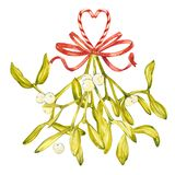Watercolor illustration of green mistletoe. The Symbol of a Kiss. Christmas set isolated on white background. Hand Stock Images