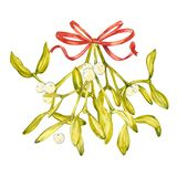 Watercolor illustration of green mistletoe. The Symbol of a Kiss. Christmas set isolated on white background. Hand Stock Photos
