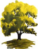Watercolor illustration of a green oak tree Stock Photo