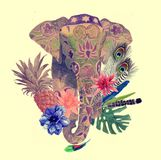 Watercolor illustration of indian elephant head. Stock Photography