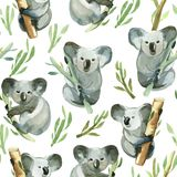 Seamless pattern of watercolor koala is holding the bamboo Stock Photo
