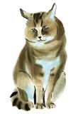 Watercolor illustration of  Jungle cat in white background. Royalty Free Stock Photos