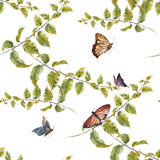 Watercolor illustration  leaf,butterfly, seamless pattern on white background Royalty Free Stock Images