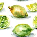 Watercolor Illustration of Lemons Royalty Free Stock Photos