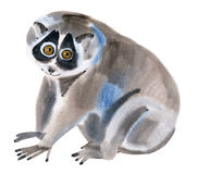 Watercolor illustration of a  lemur Lori in white background. Stock Photo