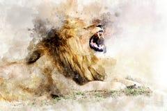 Lion - watercolor illustration portrait stock photos