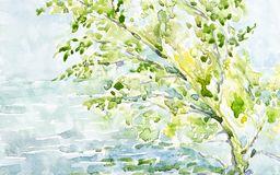 Watercolor illustration of a lonely tree on the shore of the lake.  vector illustration