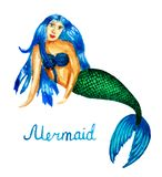 Watercolor illustration of a mermaid, a girl with a fish tail royalty free illustration