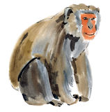 Watercolor illustration of a monkey. Macaque royalty free illustration