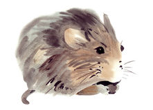 Watercolor illustration of a mouse Stock Image