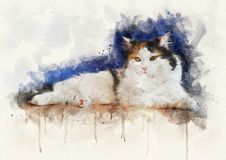 Free Watercolor Illustration Of A Calico Cat Royalty Free Stock Images - 157011279