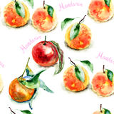Watercolor illustration of Oranges Stock Photos