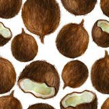 Watercolor illustration, pattern. Coconuts on a white background. stock photos