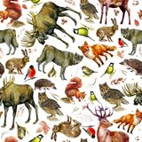 Watercolor illustration, pattern. Forest animals on a white background. Elk, wolf, fox, hare, squirrel, hedgehog, tit, bullfinch,