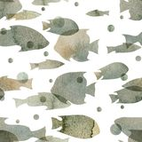 Watercolor illustration. Pattern of transparent silhouettes of fish of gray shades.  Stock Photo