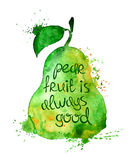 Watercolor illustration of  pear fruit. Royalty Free Stock Photos