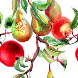 Watercolor Illustration of pears and apple. Seamless pattern Stock Image