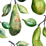 Watercolor Illustration of pears Stock Image