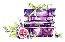 Watercolor illustration. A pile of old books with a bow, figs, leaves and berries. Antique objects. Spring collection in. Violet shades. ClipArt, DIY Royalty Free Stock Images