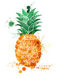 Watercolor illustration of  pineapple fruit. Royalty Free Stock Photo
