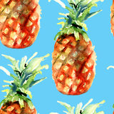 Watercolor illustration of pineapple Stock Images