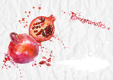 Watercolor illustration. Pomegranate on crumpled paper Royalty Free Stock Photography